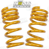 King Springs 30-50mm Raised Heavy Duty Rear Springs (KCRR-35)
